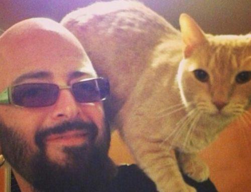 ¿Cómo educar a un gato? Jackson Galaxy, el famoso entrenador, revela sus secretos